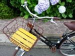 ブログ 自転車