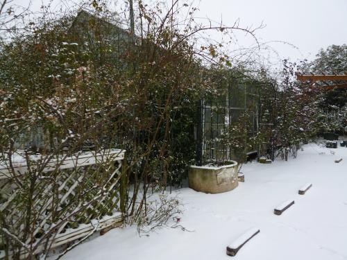 ブログ 雪の日