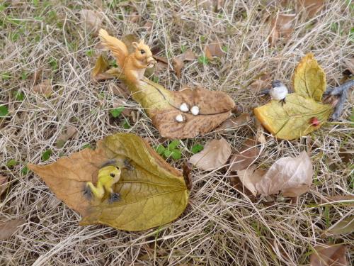 ブログ 森の仲間 木の葉