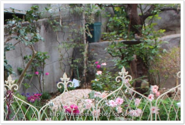 庭づくり 擁壁上 20130411