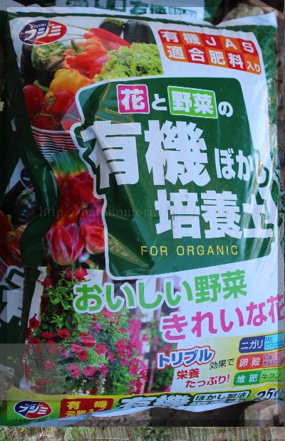 メインガーデン 花壇作り 20131126