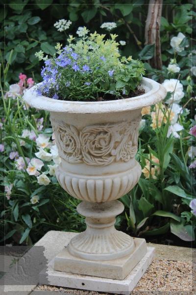 夏用寄せ植え カップ鉢 20130525