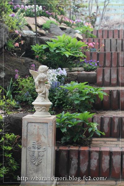庭の花 階段 20130424