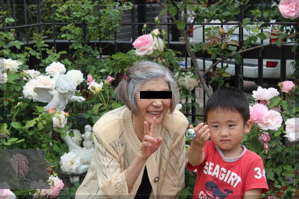 庭の花 バルコニー 20180519 母とチビ