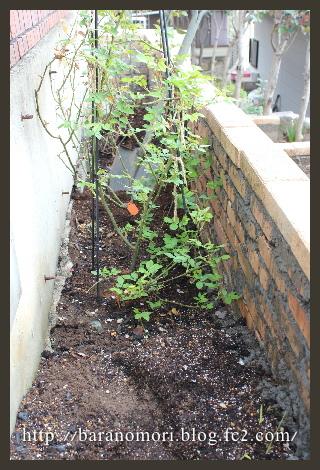 庭づくり 花壇 20130403
