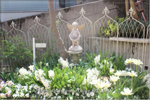 庭の花 ホワイトガーデン 20130417