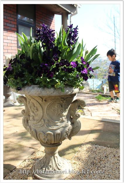 庭づくり 庭 20130411
