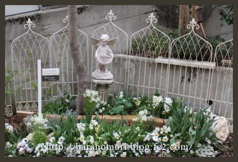 庭の花 ホワイトガーデン