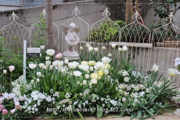 庭の花 20130430 ホワイトガーデン