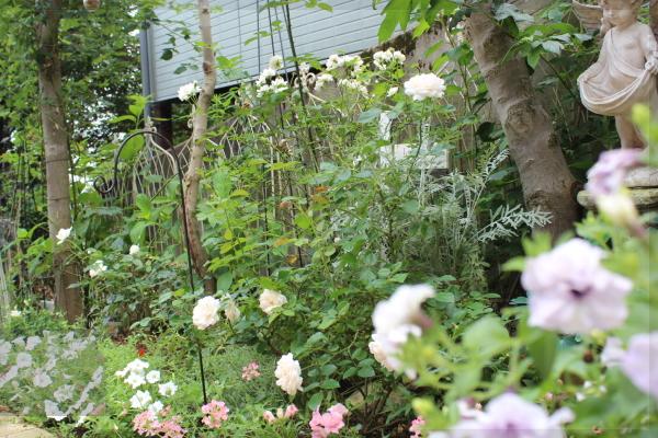 サマーメモリーズ 庭の花  2013012