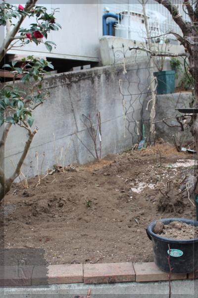 庭の花 擁壁上 201303