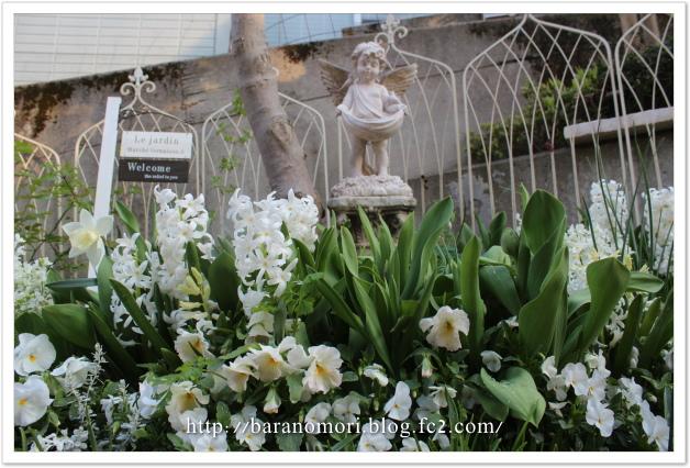 庭の花 ホワイトガーデン 20130410