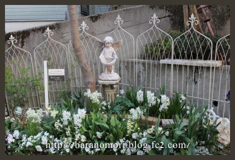 ホワイトガーデン 庭の花 20130409