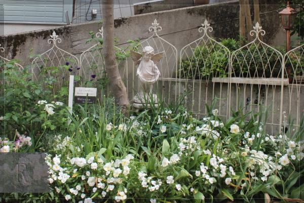 ホワイトガーデン 庭の花 20130520