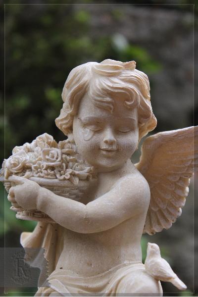 庭 天使 20130619