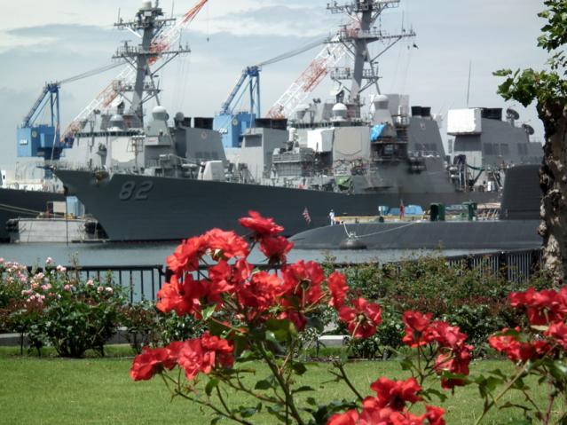 横須賀ヴェルニー公園の薔薇と海上自衛隊のフリゲート艦(2)