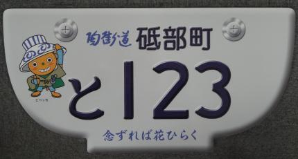 plate_20111228101440000000.jpg