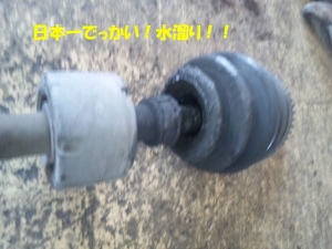 DVC00160_201401131646204da.jpg
