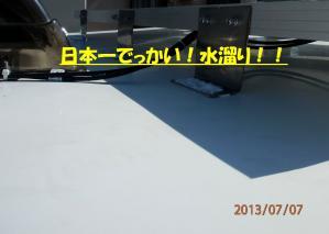 P7070007.jpg