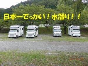 P9080006.jpg