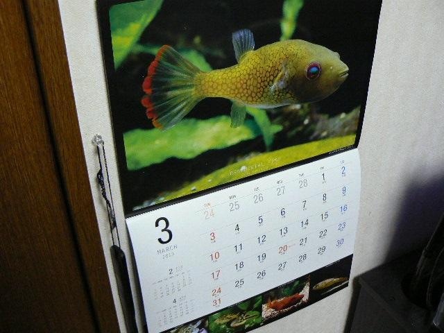 カレンダーをめくりました2
