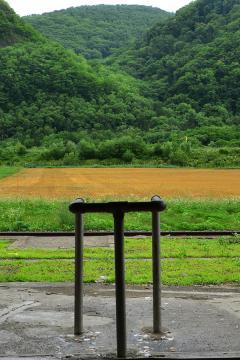 北海道201308(18)