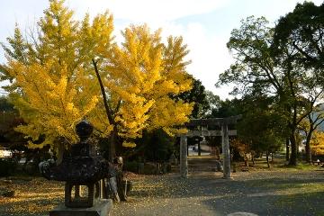 秋の風情2013(9)