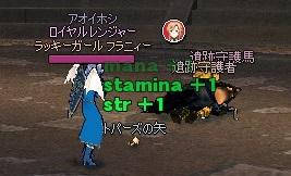 mabinogi_2013_11_04_008.jpg