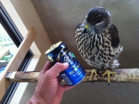 イブとビール