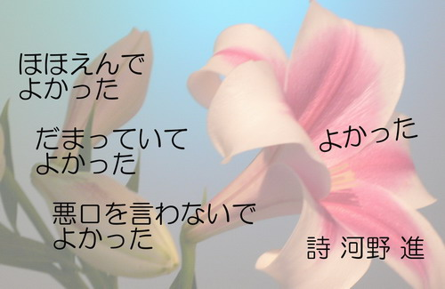 20131112yokatta.jpg
