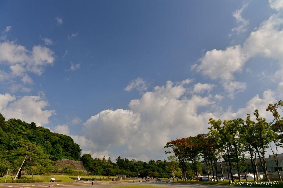 2014.09.28広阪アメリカ楓3