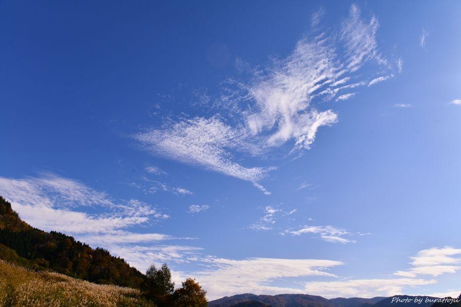 2014.10.26白峰紅葉9