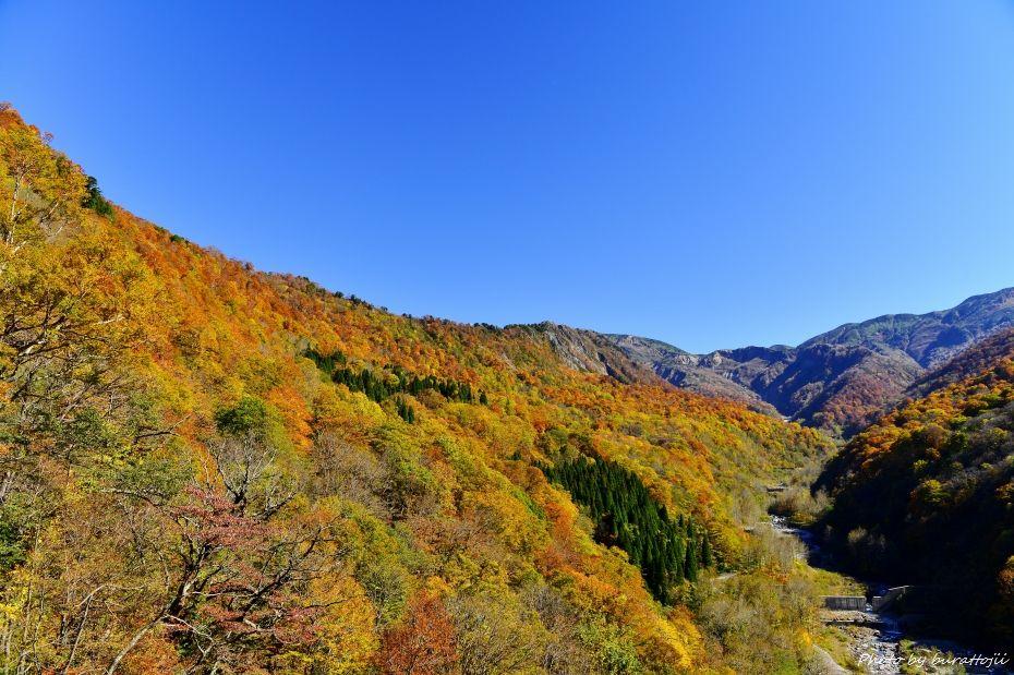 2014.10.26白峰紅葉2