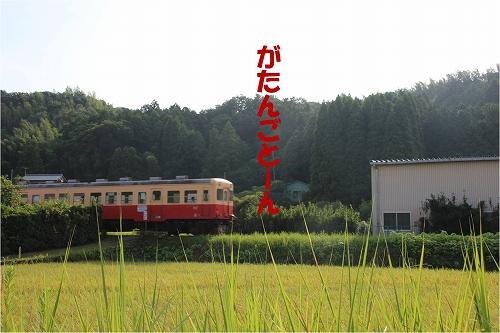 s-130905-1.jpg