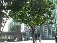 新国立美術館 (1)