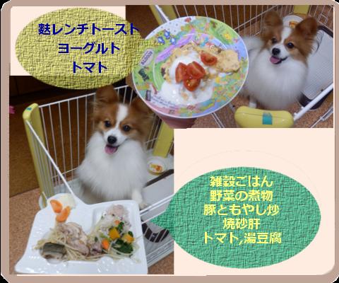 湯豆腐の季節