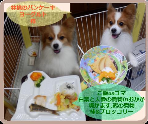 白菜と人参の煮物inおかか