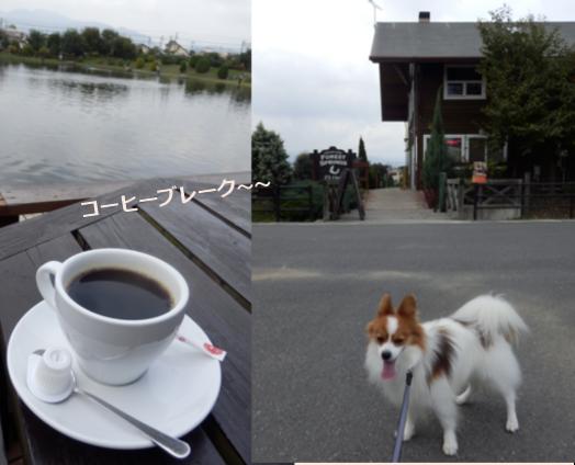 水辺公園のコーヒーブレイク