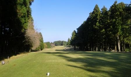 千葉国際・桜05-450w