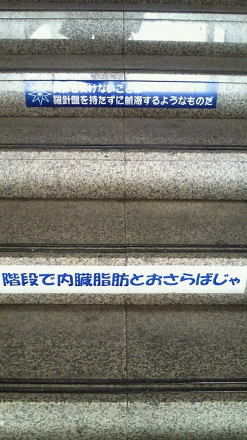 NEC_1087 (360x640)