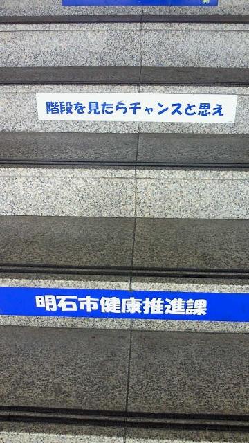 NEC_1084 (360x640)