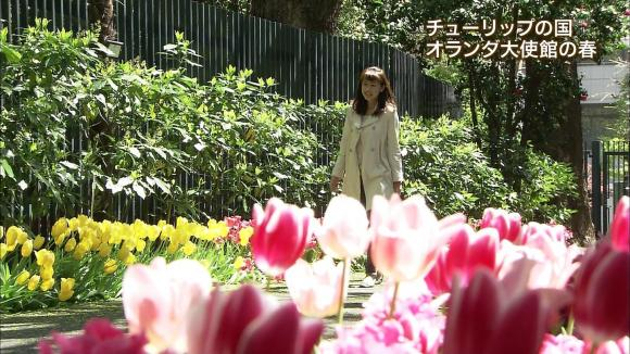aoyamamegumi_20130410_13.jpg