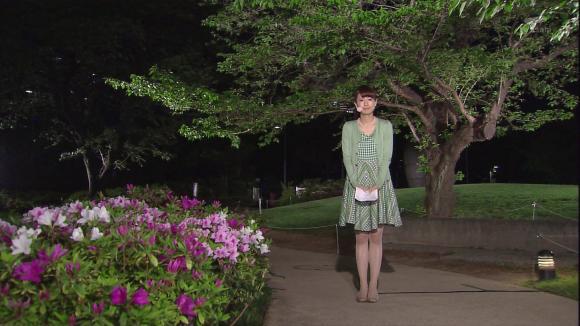aoyamamegumi_20130417_01.jpg