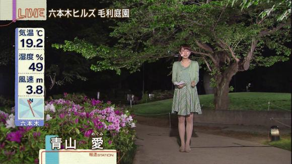 aoyamamegumi_20130417_04.jpg