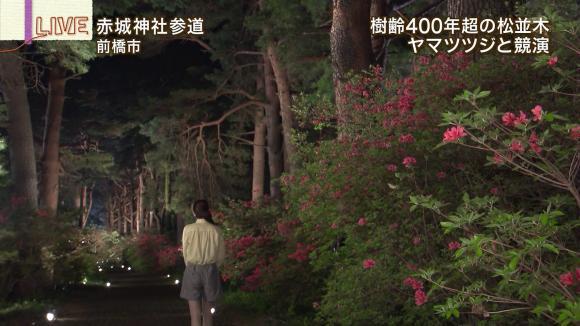 aoyamamegumi_20130510_22.jpg
