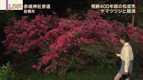 aoyamamegumi_20130510_23.jpg