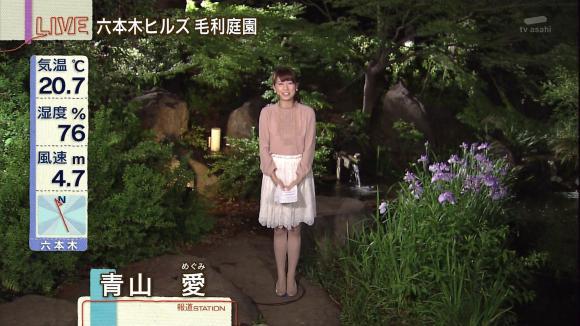 aoyamamegumi_20130529_09.jpg