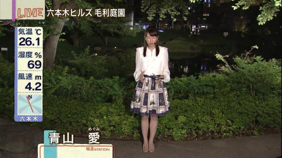 aoyamamegumi_20130618_13.jpg