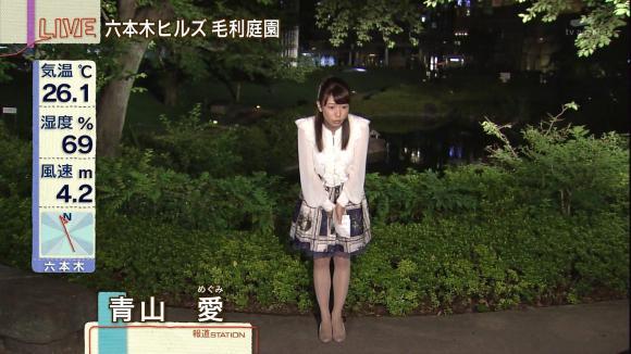 aoyamamegumi_20130618_14.jpg