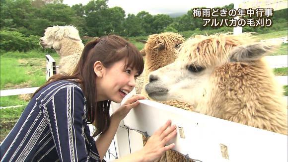 aoyamamegumi_20130626_21.jpg